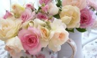 Английские розы уход